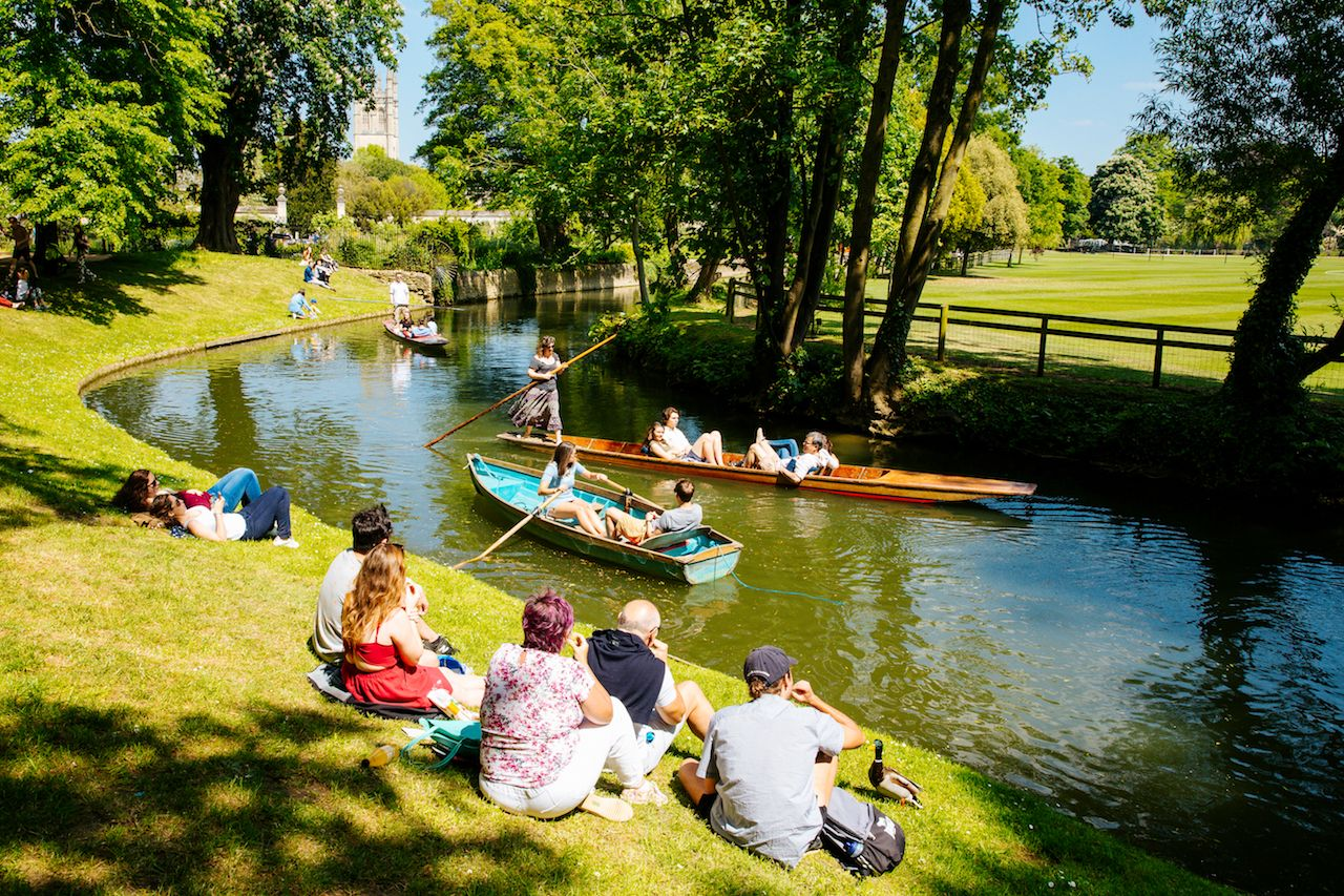 The Importance Of Cheap Punting